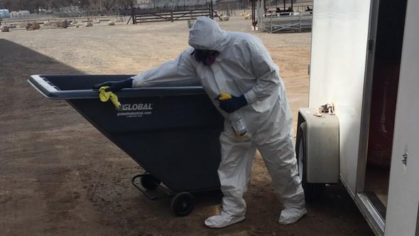 Disease Clean Up